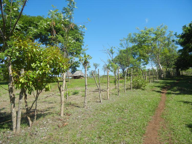 2012_0531nicaragua0440